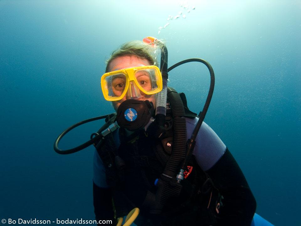 BD-071210-Sharm-100796-Homo-sapiens.-Linnaeus.-1758-[Diver].jpg